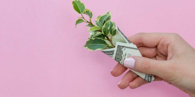 tips mengelola pinjaman tips mengelola pinjaman - nom hand plant leaves holding flat lay savings banknote dollars usd american us dollars loan budget t20 EnNeeV 750x375 - Tips mengelola pinjaman dengan bijak dan benar